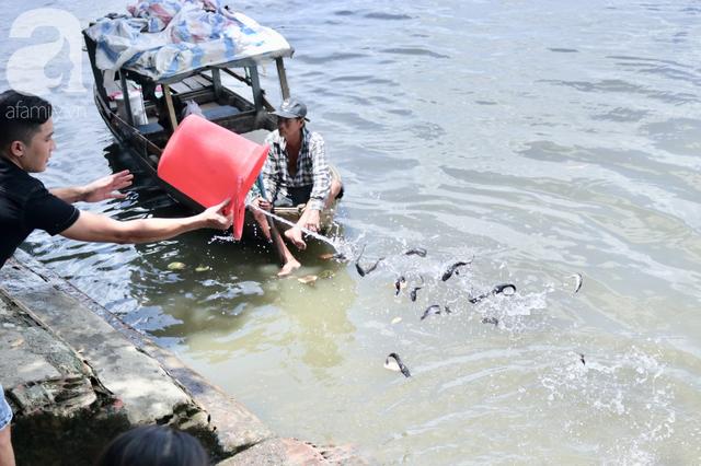 Phóng sinh Rằm tháng 7: Chim vừa sổ lồng, cá được thả xuống sông chưa kịp bơi đã bị đặt bẫy, chích điện vớt lên bán lại cho khách - Ảnh 11.