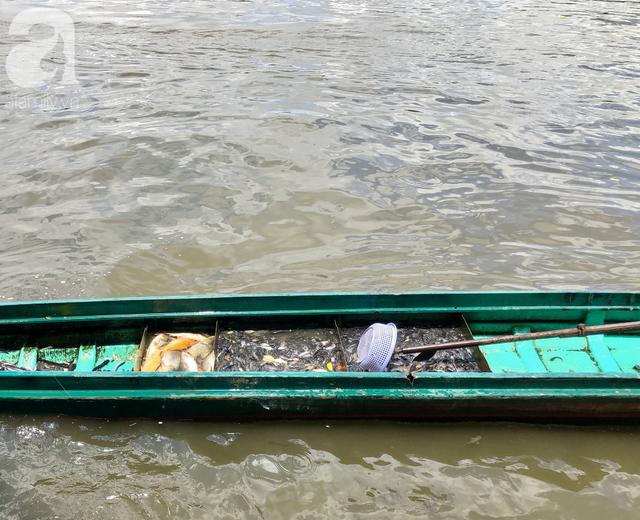 Phóng sinh Rằm tháng 7: Chim vừa sổ lồng, cá được thả xuống sông chưa kịp bơi đã bị đặt bẫy, chích điện vớt lên bán lại cho khách - Ảnh 20.