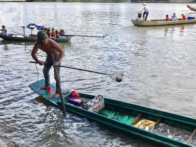 Phóng sinh Rằm tháng 7: Chim vừa sổ lồng, cá được thả xuống sông chưa kịp bơi đã bị đặt bẫy, chích điện vớt lên bán lại cho khách - Ảnh 6.