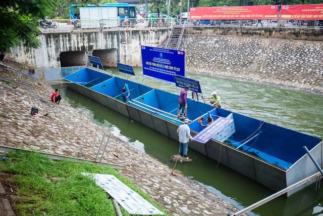 Lắp đặt khu vực trình diễn xử lý nước ô nhiễm, chuyên gia Nhật sẽ tắm sông Tô Lịch - Ảnh 1.