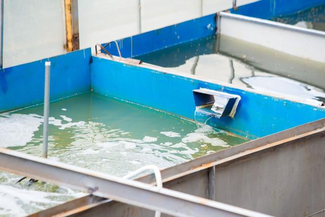Chuyên gia Nhật Bản rửa mặt, tắm gội giữa sông Tô Lịch - Ảnh 6.