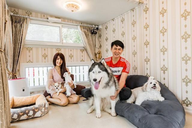 Cặp đôi chi tiền khủng xây biệt thự làm... chuồng chó cho cún cưng, trong nhà có máy lạnh, đủ đồ chơi và ở được ít nhất 3 người - Ảnh 3.