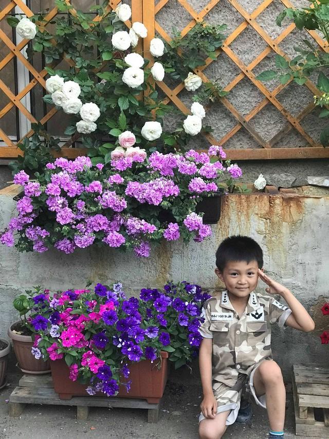 Mẹ đảm ở Czech cải tạo sân bê tông thành khu vườn với bạt ngàn rau củ quả Việt tươi tốt - Ảnh 4.