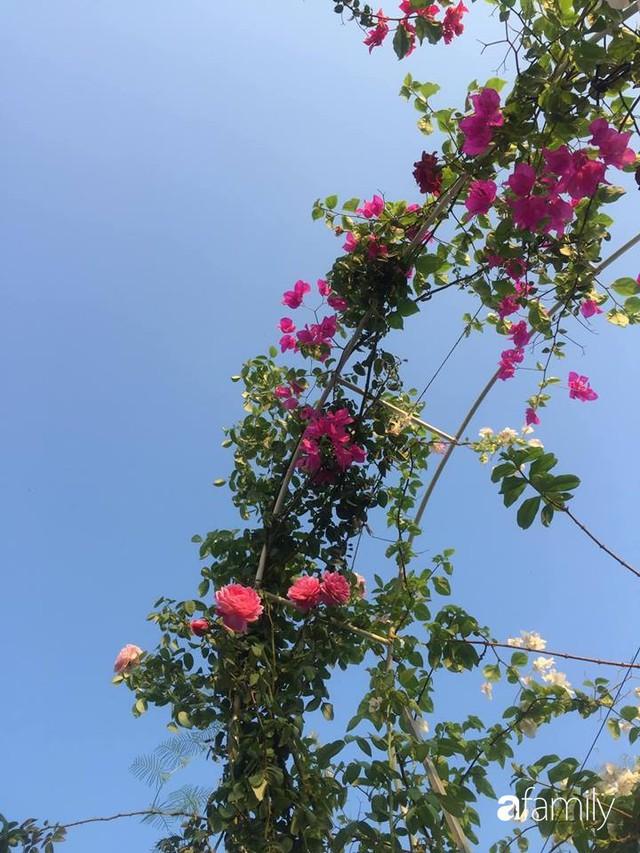 Khu vườn 30m² muôn hoa đua nở trên sân thượng của mẹ đảm thích mộng mơ ở TP. HCM - Ảnh 24.