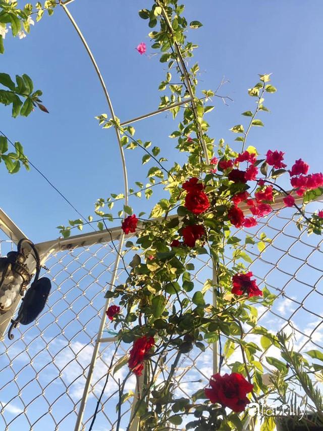 Khu vườn 30m² muôn hoa đua nở trên sân thượng của mẹ đảm thích mộng mơ ở TP. HCM - Ảnh 32.