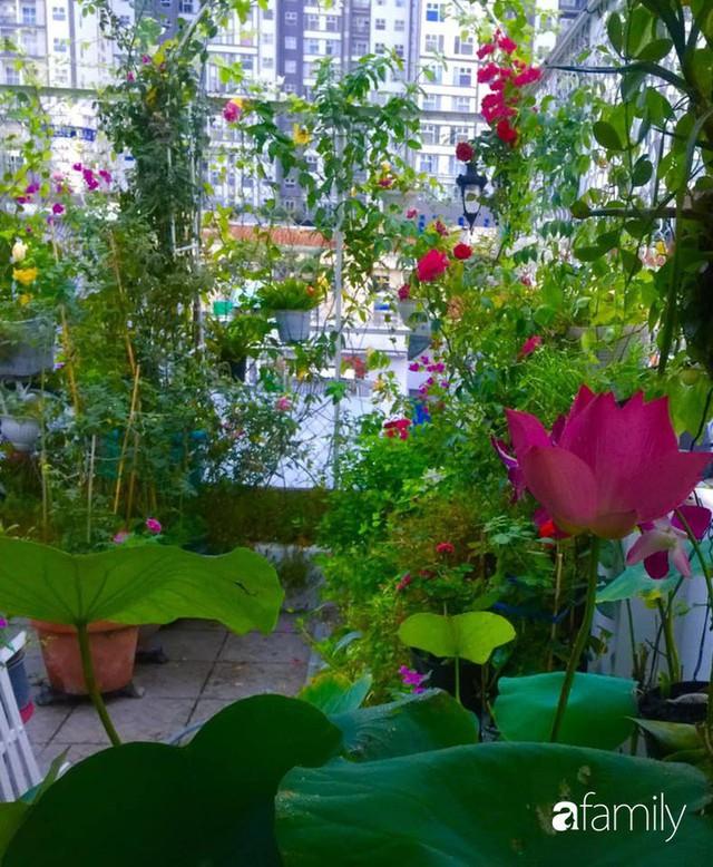 Khu vườn 30m² muôn hoa đua nở trên sân thượng của mẹ đảm thích mộng mơ ở TP. HCM - Ảnh 34.