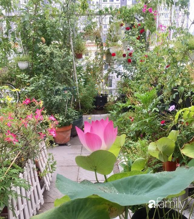 Khu vườn 30m² muôn hoa đua nở trên sân thượng của mẹ đảm thích mộng mơ ở TP. HCM - Ảnh 10.