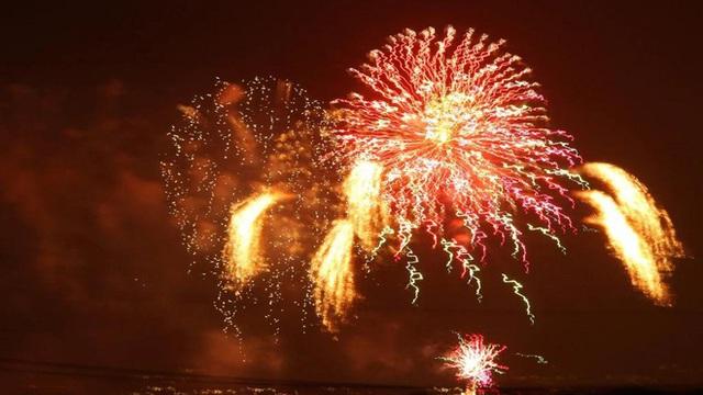 Thế giới bước sang năm mới 2020 trong pháo hoa và cháy rừng - Ảnh 13.