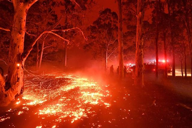 Thế giới bước sang năm mới 2020 trong pháo hoa và cháy rừng - Ảnh 38.