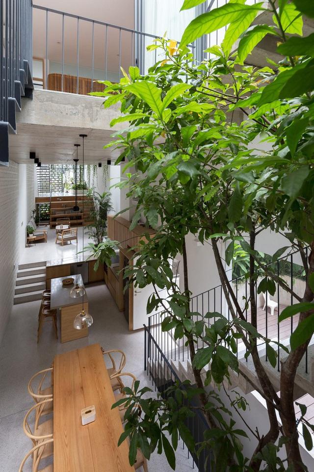 Ngôi nhà với thiết kế 2 lớp mặt tiền chống khói bụi ở Hà Nội - Ảnh 6.