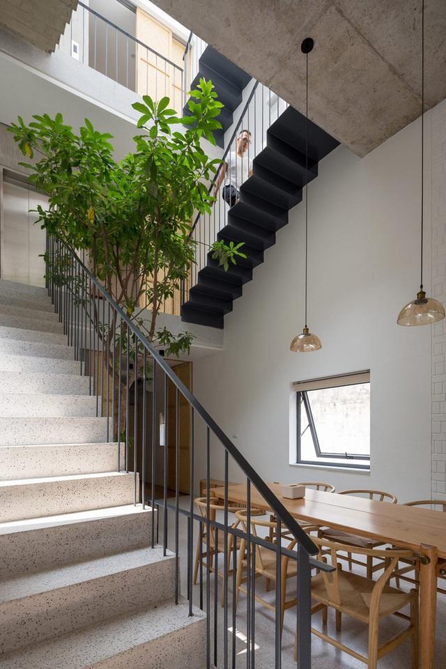 Ngôi nhà với thiết kế 2 lớp mặt tiền chống khói bụi ở Hà Nội - Ảnh 8.