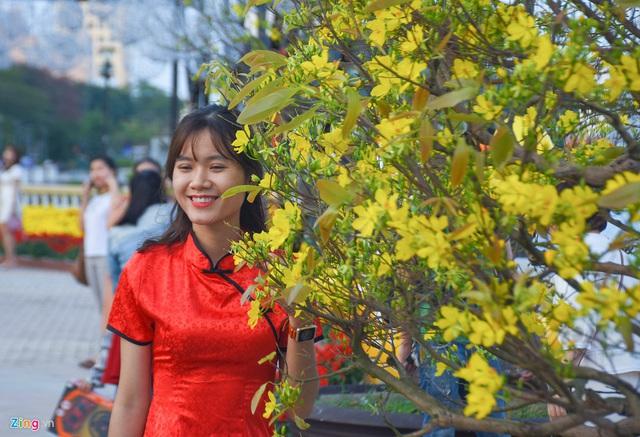 Ngắm đường hoa hơn 6 tỷ ở Đà Nẵng - Ảnh 12.
