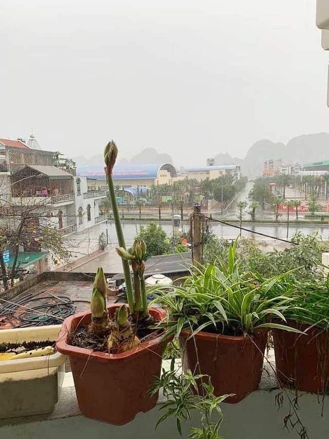 Tết đầu năm mưa gió bão bùng, dân tình dở khóc dở cười khoe ảnh du xuân đáng nhớ nhất trong lịch sử - Ảnh 26.