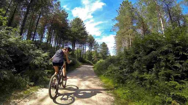 7 mẹo hữu ích để việc đạp xe leo dốc trở nên dễ dàng hơn  - Ảnh 3.