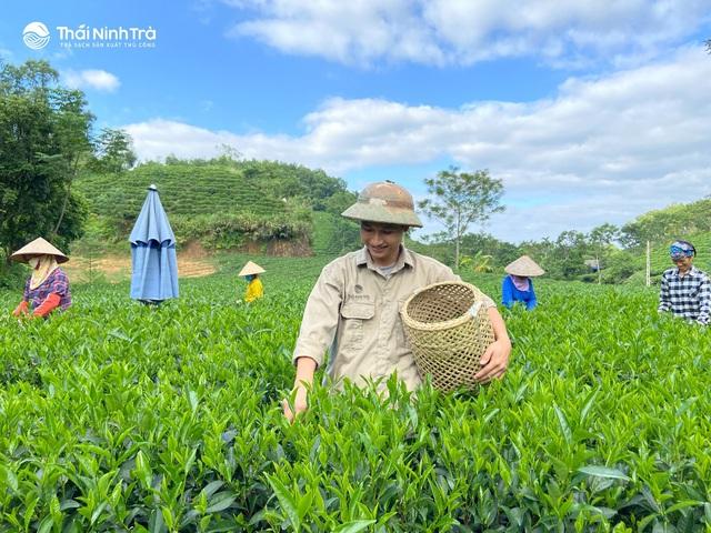Chàng kỹ sư công nghệ khai sinh một thương hiệu trà sạch sản xuất thủ công - Ảnh 3.