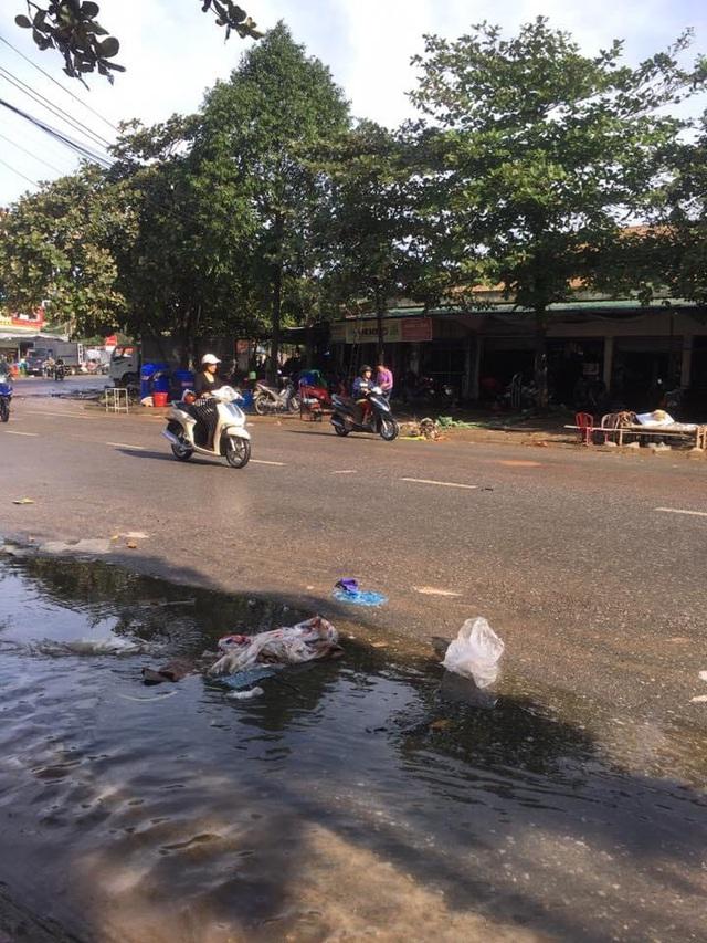Thành phố Hà Tĩnh ngập chìm trong rác sau khi nước rút - Ảnh 8.