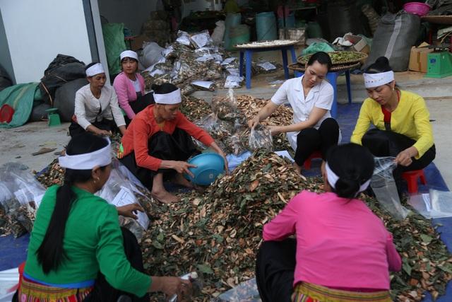 Lương y Nguyễn Thị Hiền – Kho thuốc sống của người Việt - Ảnh 6.