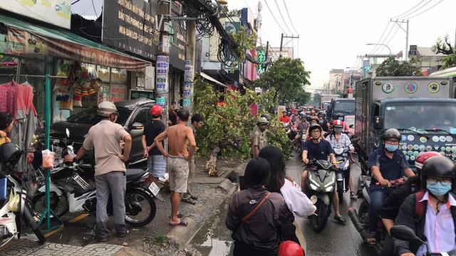 TP.HCM: Ô tô tông nhiều xe máy nằm la liệt, làm gãy cây xanh và khiến cửa hàng bị hư hỏng - Ảnh 3.