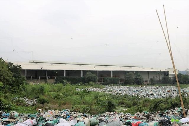 Hãi hùng những bãi rác bủa vây dân cư ở Hải Phòng - Ảnh 1.