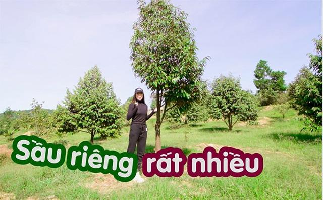 Khu vườn rộng gần 10.000 m2 bạt ngàn cây trái của Trà Ngọc Hằng - Ảnh 7.