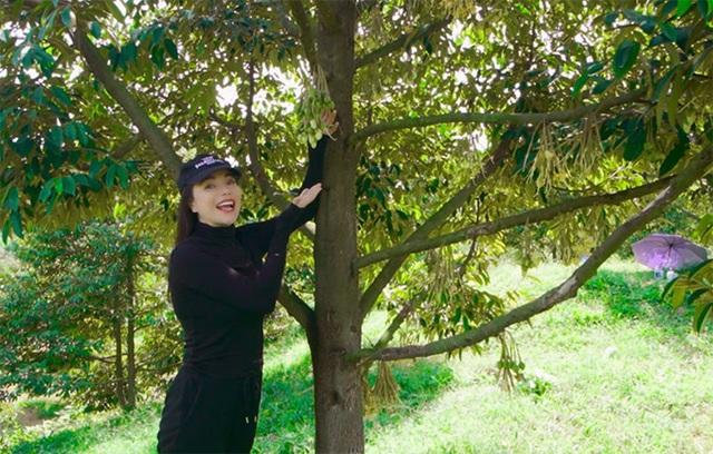 Khu vườn rộng gần 10.000 m2 bạt ngàn cây trái của Trà Ngọc Hằng - Ảnh 8.