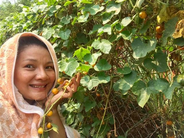 Kiều Trinh thu hoạch mỏi tay sau một năm làm vườn ở Bình Phước - Ảnh 11.