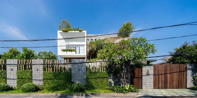 Ngôi nhà hình ruộng bậc thang phủ đầy cây xanh - Ảnh 1.