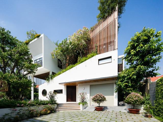 Ngôi nhà hình ruộng bậc thang phủ đầy cây xanh - Ảnh 2.