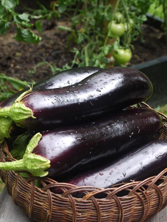 Khu vườn đủ loại rau quả đẹp như tranh của người phụ nữ trồng trọt từ năm 16 tuổi đến 63 tuổi - Ảnh 24.