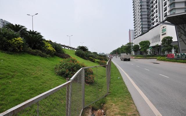 Hàng lang dẫn lên cầu Thanh Trì biến thành thảm hoa vô cùng đẹp mắt - Ảnh 9.