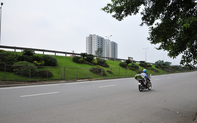 Hàng lang dẫn lên cầu Thanh Trì biến thành thảm hoa vô cùng đẹp mắt - Ảnh 5.