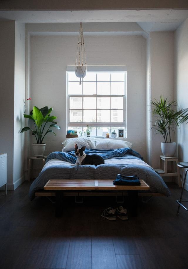 Nếu đầu giường để hai thứ này, tình cảm vợ chồng có thể xuất hiện bất hòa, sức khỏe giảm sút - Ảnh 3.