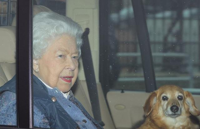 Nữ hoàng cưỡi ngựa sau 10 tuần cách ly - Ảnh 4.