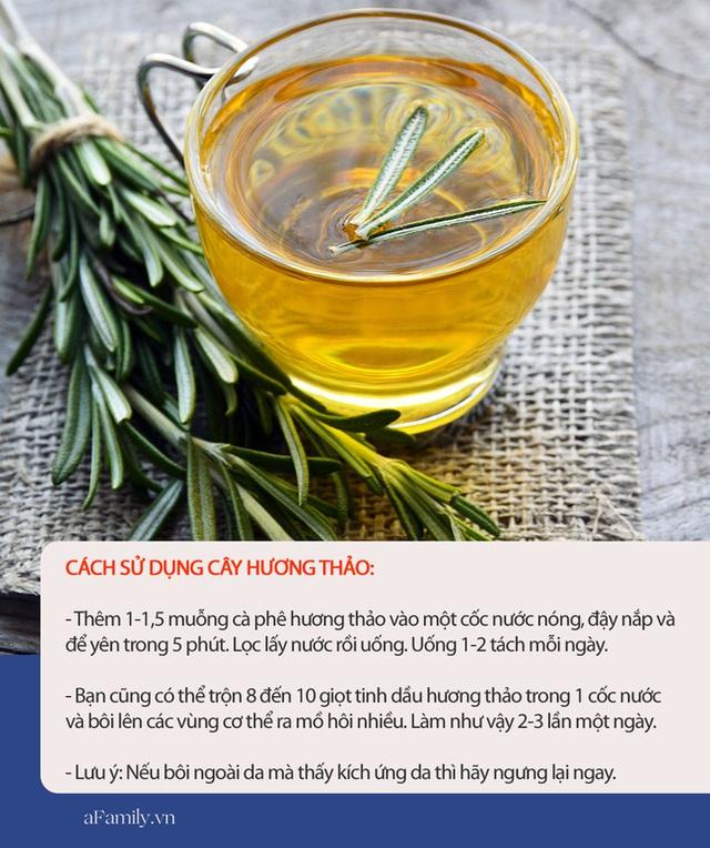 Muốn cơ thể thơm tho suốt cả ngày trong mùa hè, hãy dùng 7 loại thực phẩm này, vừa rẻ tiền lại công dụng tức thì - Ảnh 6.