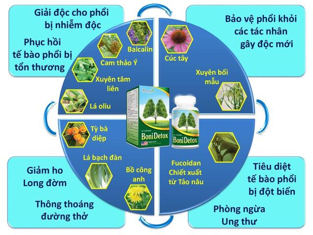 BoniDetox – Bí quyết vàng giải độc phổi do ô nhiễm không khí và hút thuốc lá - Ảnh 2.