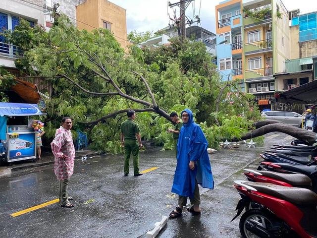 Cây bật gốc, đổ vào nhà dân sau cơn mưa ở TP.HCM - Ảnh 1.