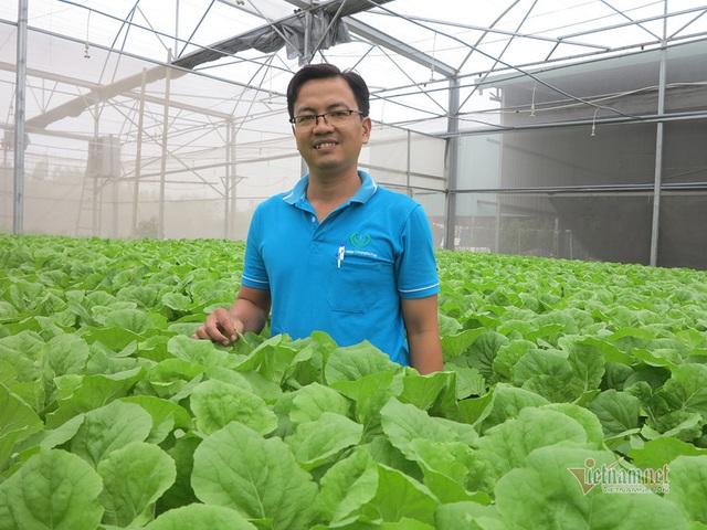 Bỏ ngân hàng về trồng rau, làm vì đam mê thu đều 600 triệu/tháng - Ảnh 2.