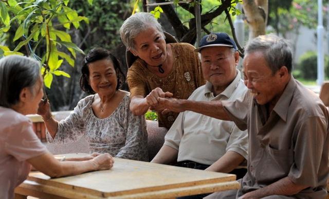 TP.HCM: Tất cả các bệnh viện đều phải có khoa lão cho người cao tuổi - Ảnh 2.