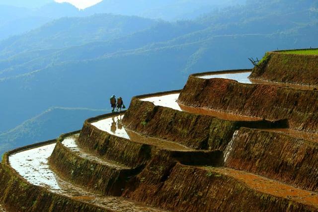 Ngắm ruộng bậc thang Mù Cang Chải đẹp lung linh mùa đổ nước - Ảnh 1.