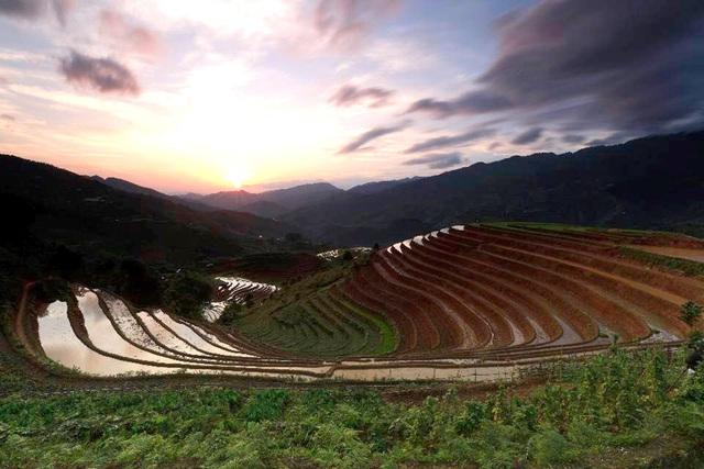 Ngắm ruộng bậc thang Mù Cang Chải đẹp lung linh mùa đổ nước - Ảnh 7.