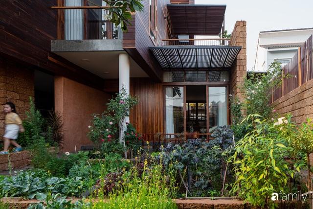 Mảnh vườn 50m² tốt tươi quanh năm nhờ bí quyết trộn đất không giống ai của bà mẹ ở Sài Gòn - Ảnh 13.