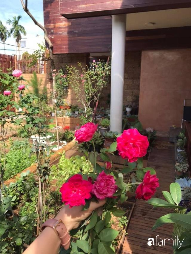 Mảnh vườn 50m² tốt tươi quanh năm nhờ bí quyết trộn đất không giống ai của bà mẹ ở Sài Gòn - Ảnh 15.