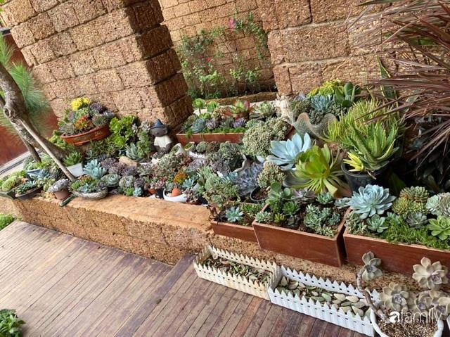 Mảnh vườn 50m² tốt tươi quanh năm nhờ bí quyết trộn đất không giống ai của bà mẹ ở Sài Gòn - Ảnh 20.
