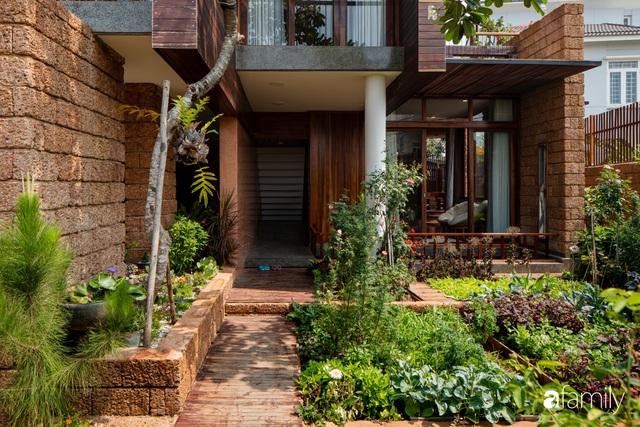 Mảnh vườn 50m² tốt tươi quanh năm nhờ bí quyết trộn đất không giống ai của bà mẹ ở Sài Gòn - Ảnh 3.