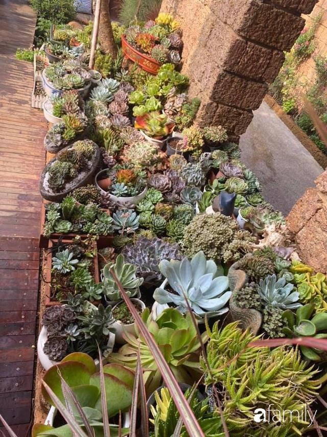 Mảnh vườn 50m² tốt tươi quanh năm nhờ bí quyết trộn đất không giống ai của bà mẹ ở Sài Gòn - Ảnh 21.