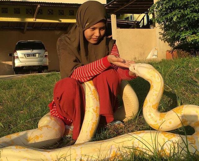 Cô bé nuôi 6 con trăn khổng lồ làm thú cưng - Ảnh 1.