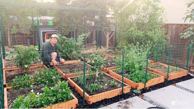 Cuộc sống bình yên, hòa mình cùng thiên nhiên khi trồng rau nuôi gà trong mảnh vườn 650m² của mẹ Việt ở Mỹ - Ảnh 1.