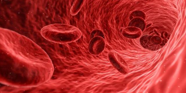 Dù là nam hay nữ, nếu có 2 đỏ vào buổi sáng và 2 mịn vào buổi tối thì nên ăn mừng vì bạn đang có mạnh máu khỏe, tuổi thọ sẽ cao nếu duy trì tốt - Ảnh 1.