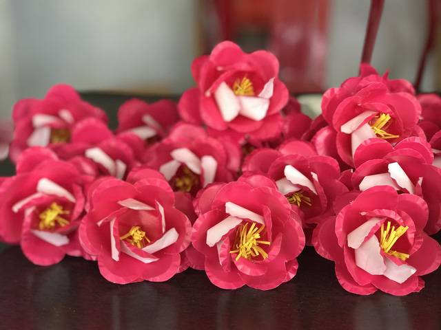 Sắc xuân tại làng hoa giấy hơn 300 năm tuổi ở Thừa Thiên Huế - Ảnh 6.