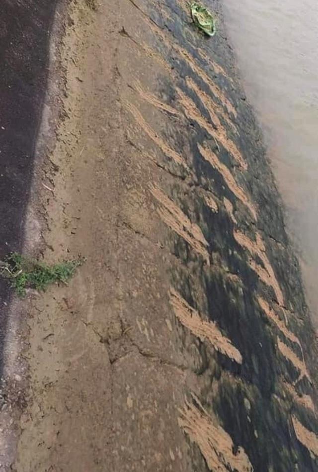 Ám ảnh những vết cào cấu trên bờ đê của cậu bé lớp 3 khi cố thoát khỏi dòng nước dữ - Ảnh 2.